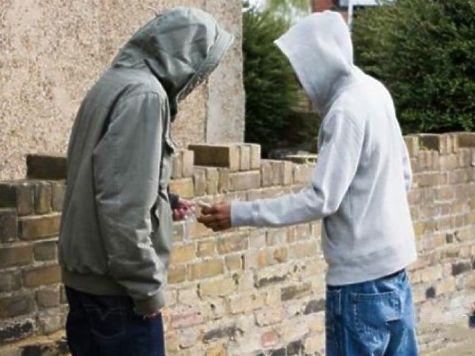Вкостромском детском саду члены группировки фасовали наркотики